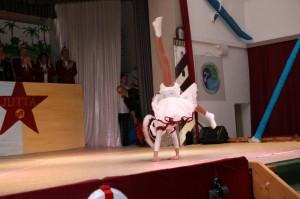 Sitzung 2017 - Jugend-Tanzmariechen